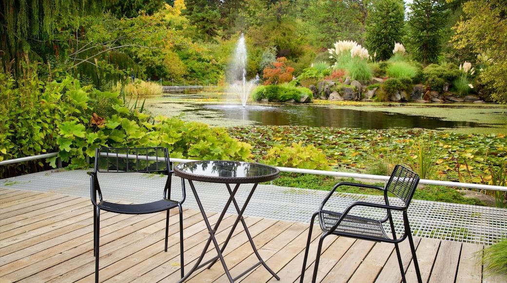 Jardín botánico VanDusen que incluye un lago o espejo de agua, un parque y una fuente
