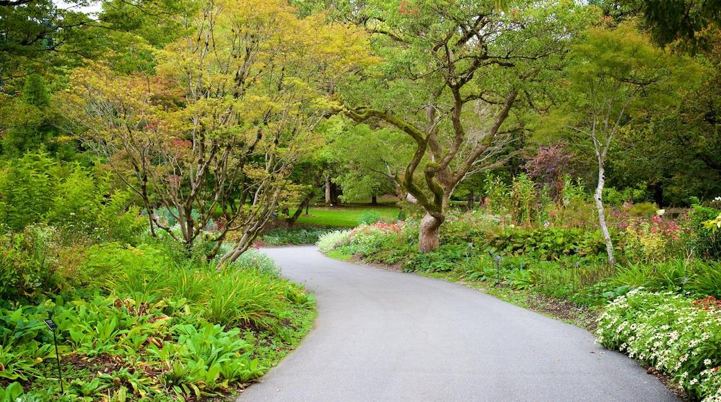Jardín botánico VanDusen ofreciendo un parque
