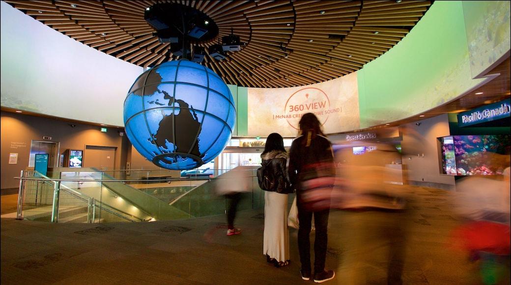 พิพิธภัณฑ์สัตว์น้ำแวนคูเวอร์ แสดง การตกแต่งภายใน และ ชีวิตทางทะเล