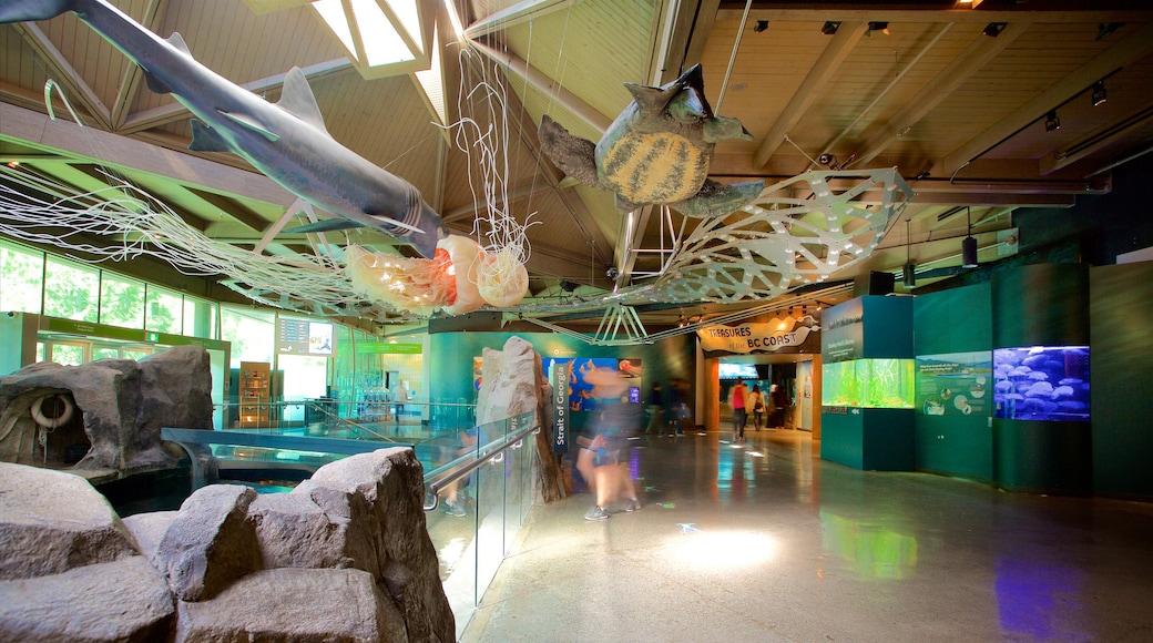 พิพิธภัณฑ์สัตว์น้ำแวนคูเวอร์ เนื้อเรื่องที่ การตกแต่งภายใน และ ชีวิตทางทะเล