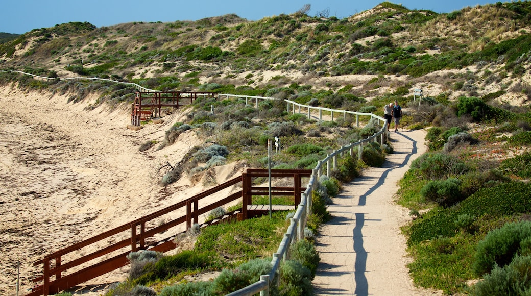 Prevelly Beach showing general coastal views and a sandy beach