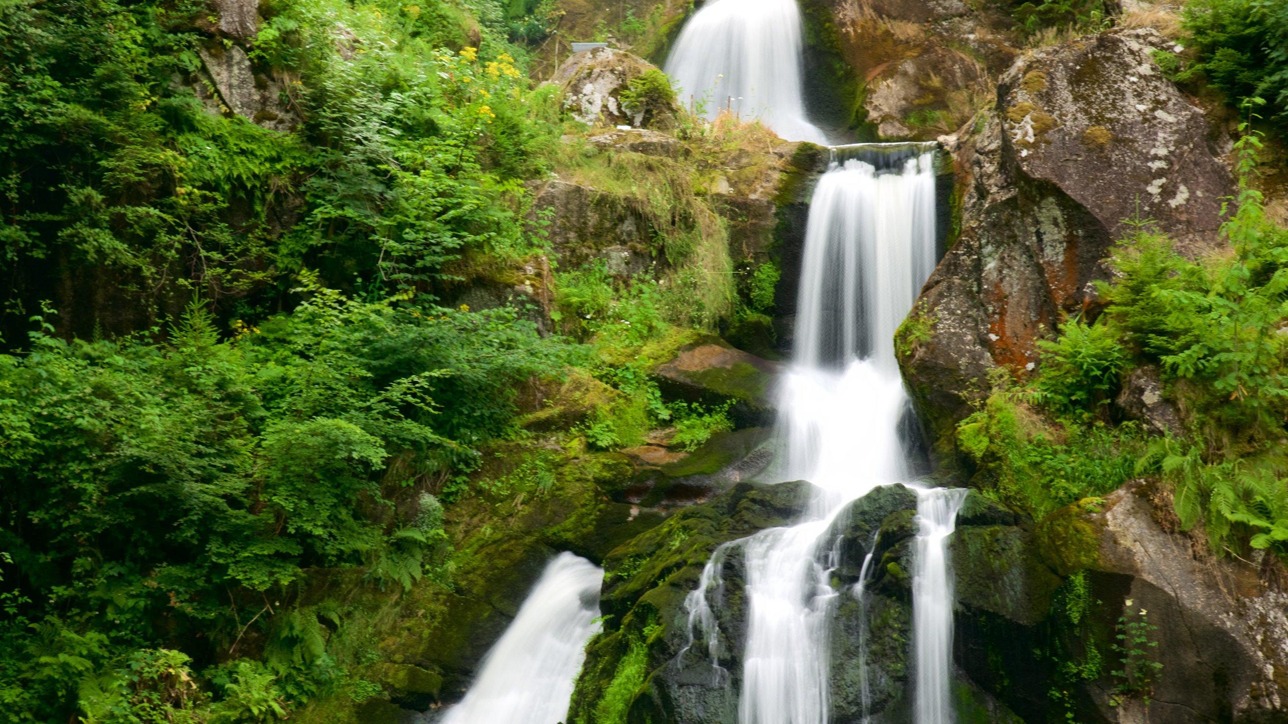 Triberg Waterfall, Triberg im Schwarzwald, Baden-Württemberg, Germany