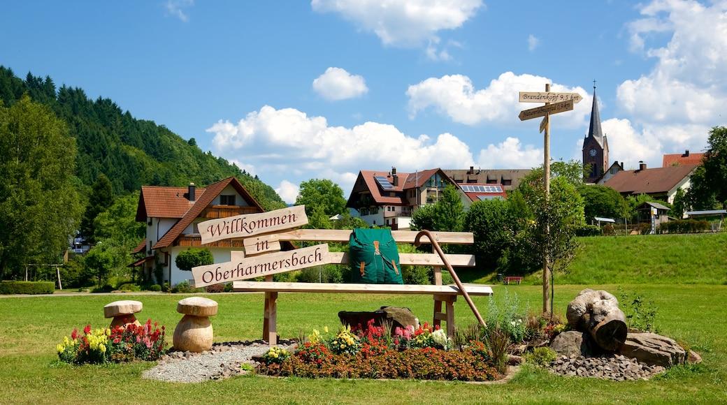 Schwarzwald welches beinhaltet Beschilderung