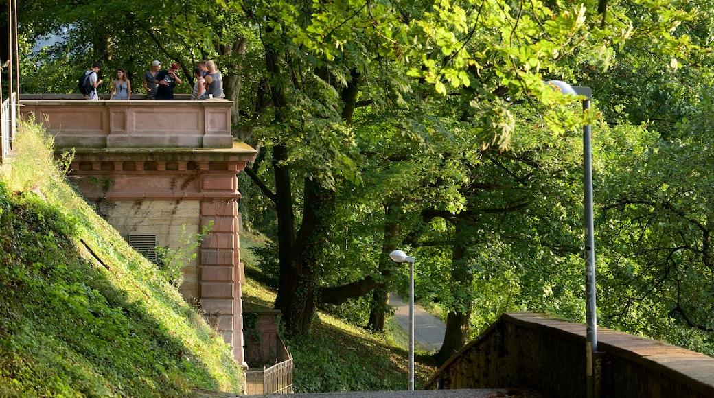 Freiburg mit einem Garten und Ansichten
