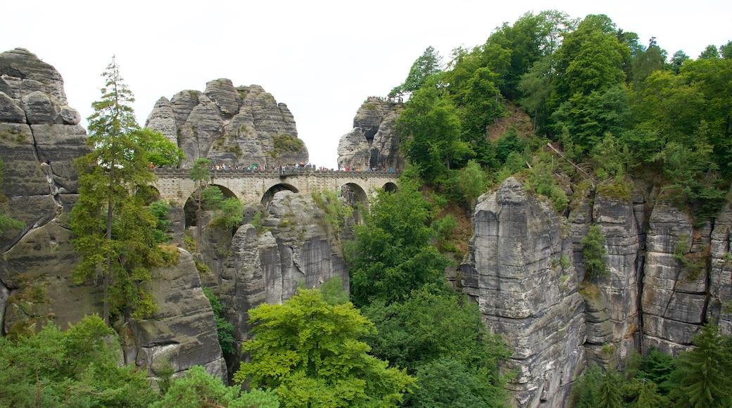 Bad Schandau mit einem Brücke