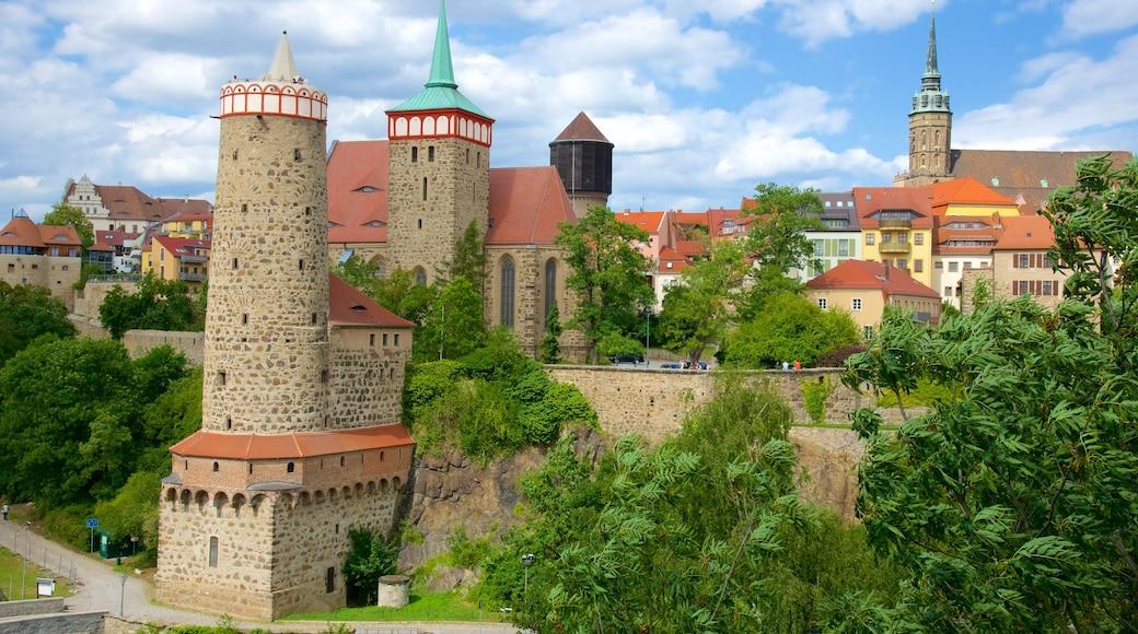 Bautzen som viser slot eller palads