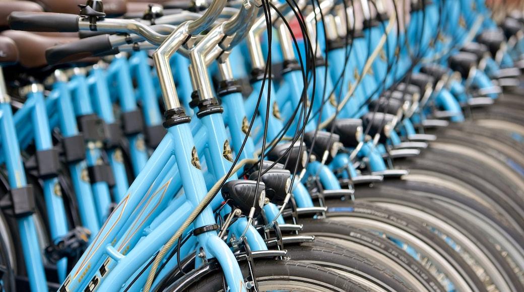Torstrasse caratteristiche di bicicletta