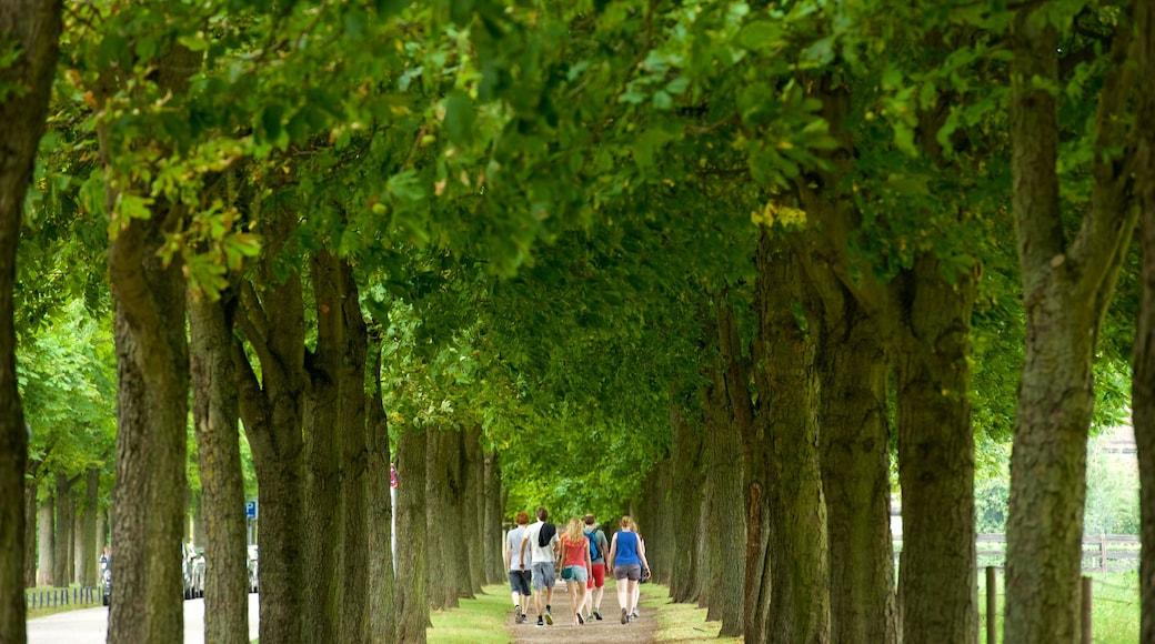 쉴러플라츠 광장 을 특징 공원 뿐만 아니라 소규모 사람들