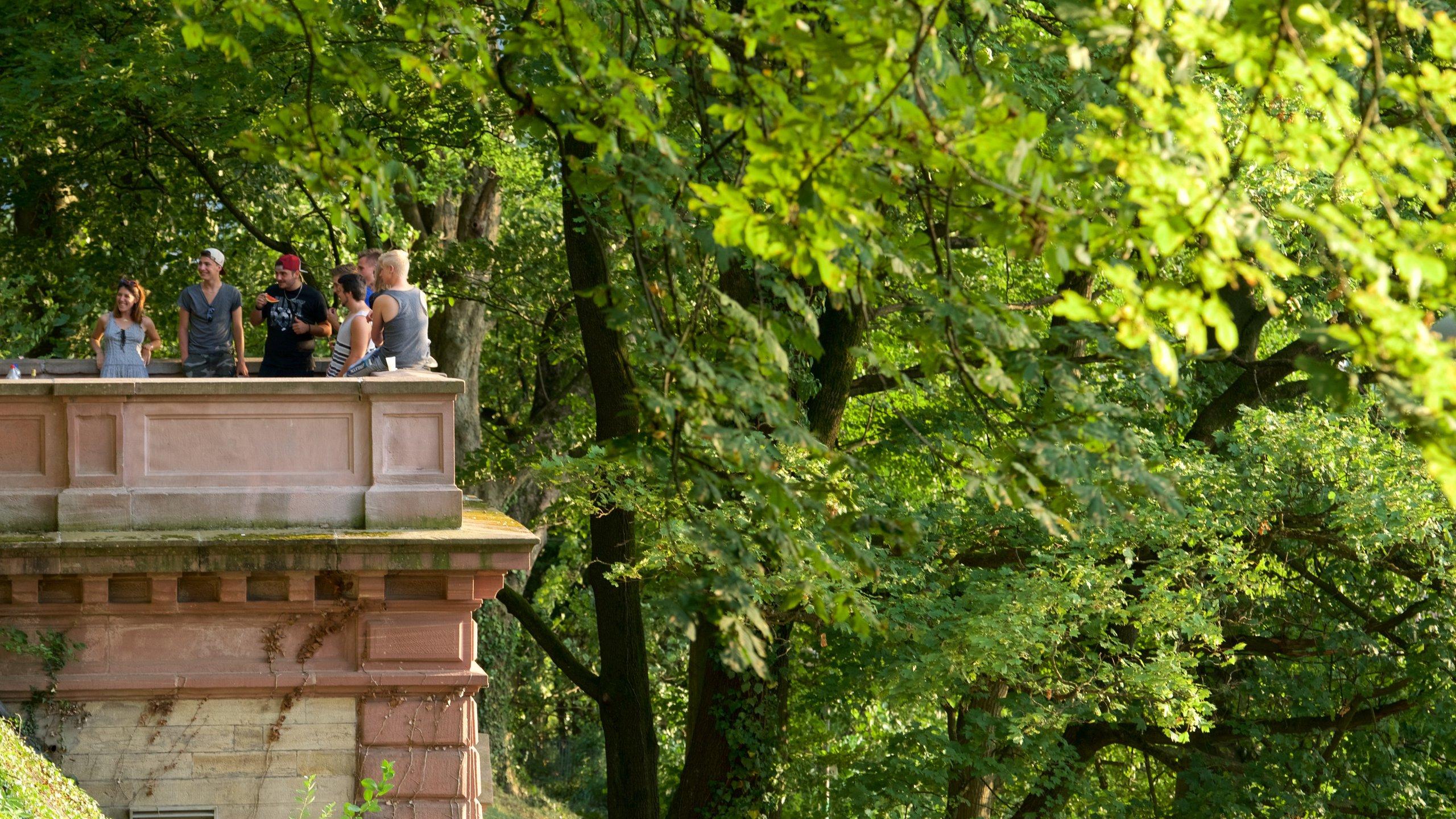 Schlossberg, Freiburg im Breisgau, Baden-Württemberg, Deutschland