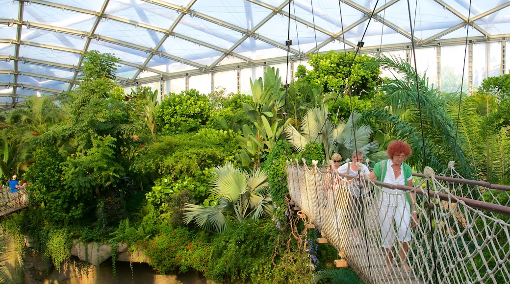 Zoo Leipzig mit einem Brücke und Innenansichten sowie kleine Menschengruppe