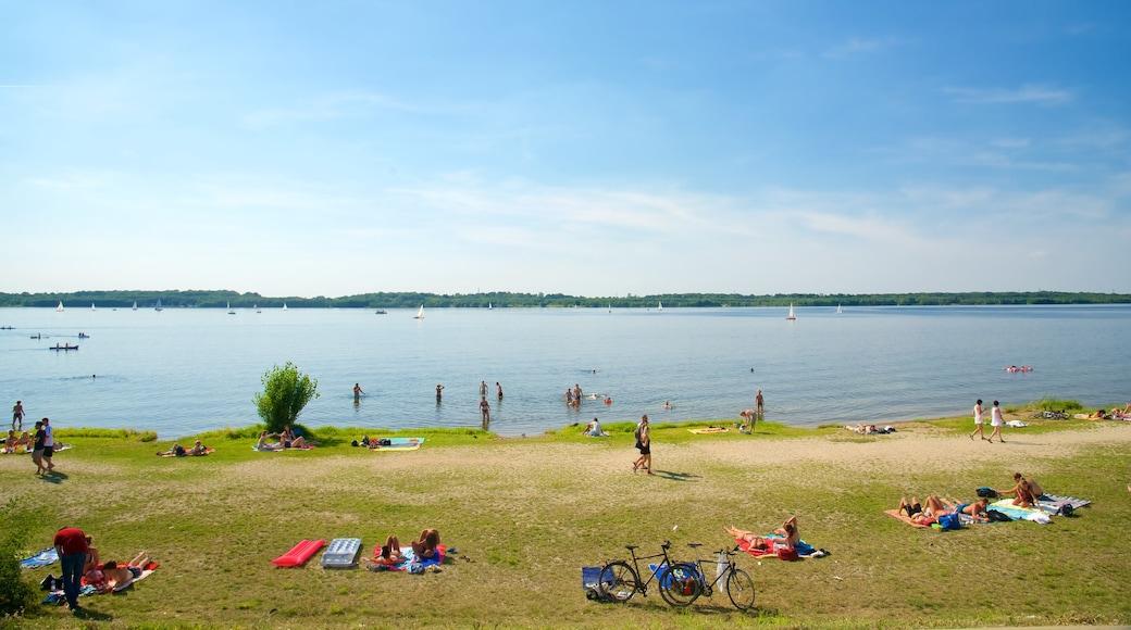 Cospudener See welches beinhaltet See oder Wasserstelle sowie große Menschengruppe
