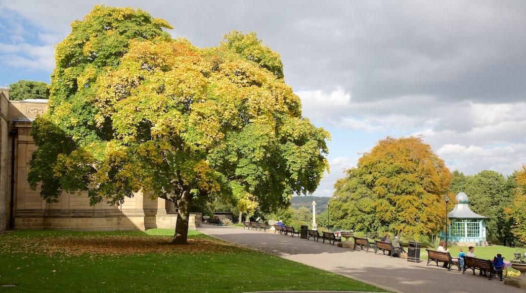 Weston Park Museum which includes a garden