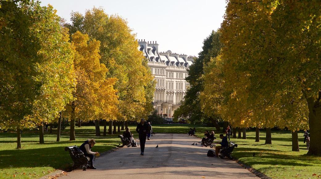 Kensington Gardens som inkluderar en park