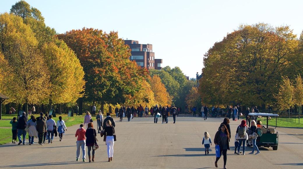 Kensington Gardens fasiliteter samt park i tillegg til en stor gruppe med mennesker