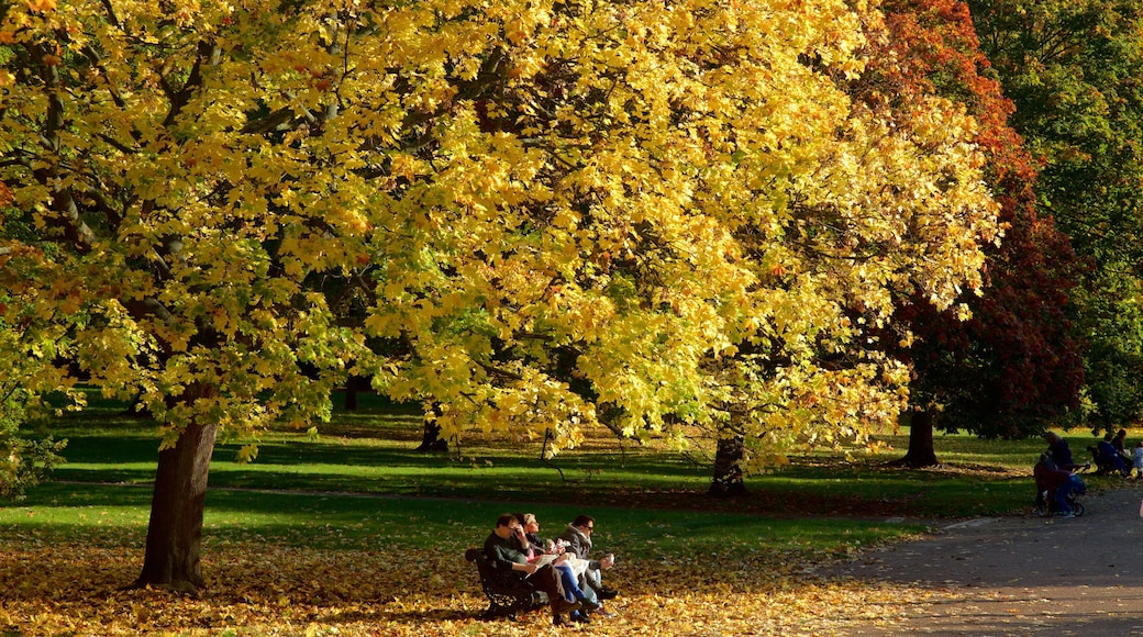 Kensington Gardens which includes a garden and autumn colours as well as a small group of people