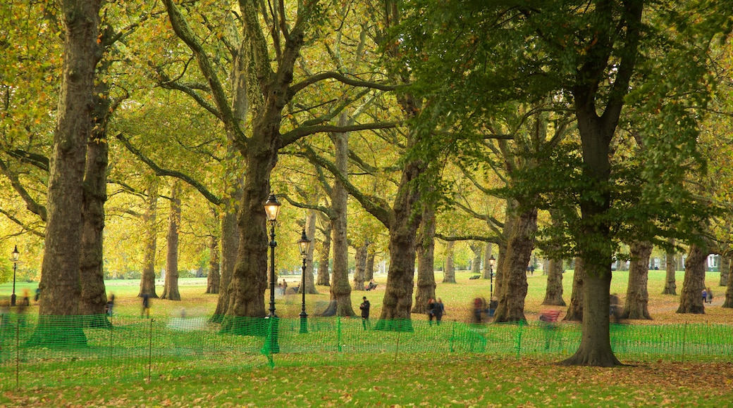 Green Park das einen Park