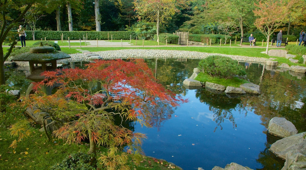 Holland Park caracterizando um lago e um parque