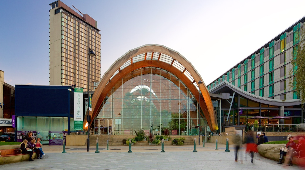 Sheffield Winter Garden which includes a garden, modern architecture and a city