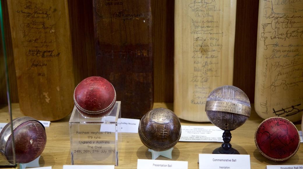 Kennington Oval mostrando vistas internas