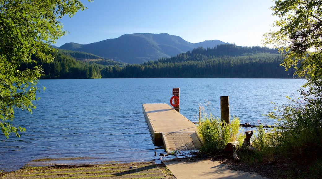 Central Washington showing forest scenes, a lake or waterhole and mountains