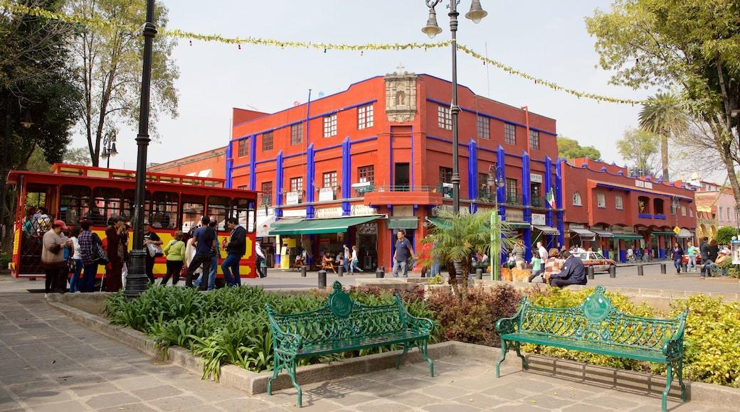 Coyoacán mettant en vedette parc, square ou place et ville