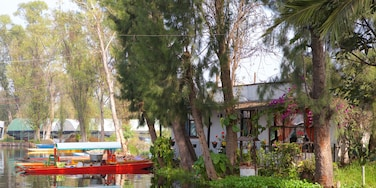 Xochimilco featuring a river or creek, a house and boating
