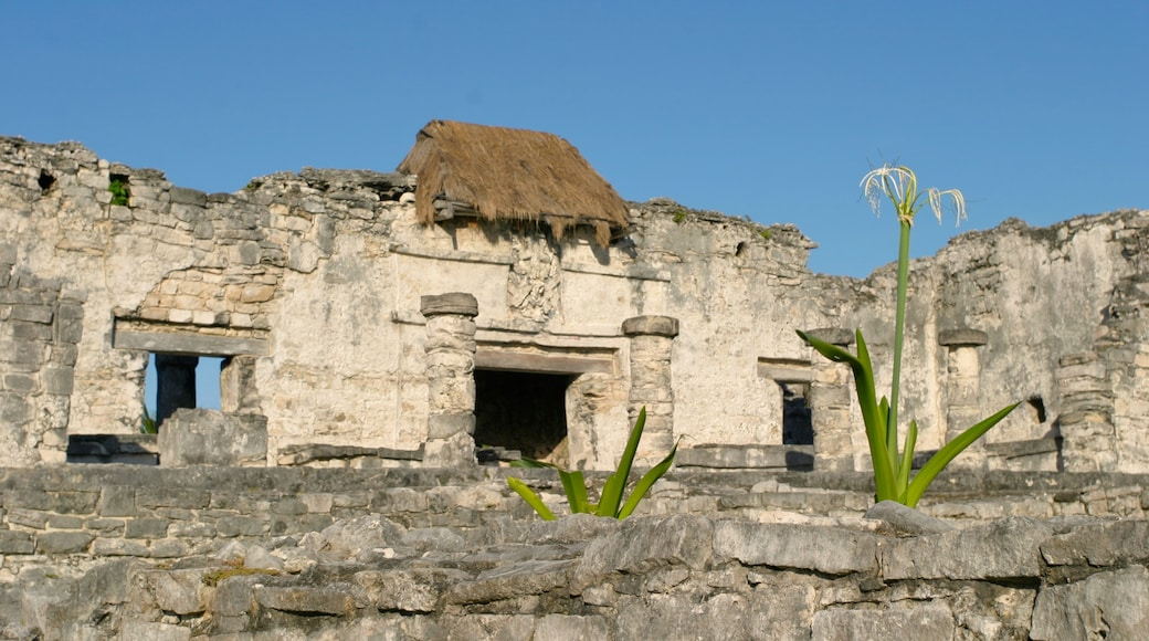 Tulum which includes heritage elements and heritage architecture