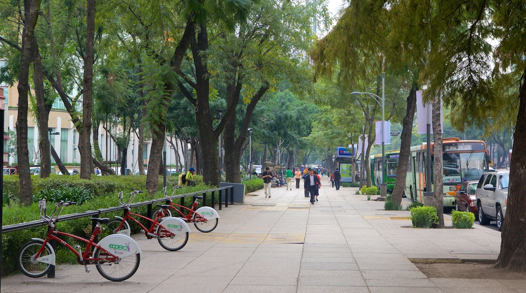 Reforma showing a garden and street scenes