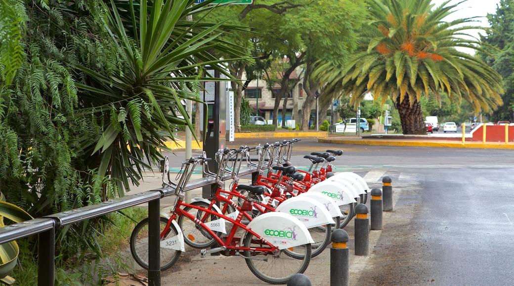 Polanco que incluye ciclismo y una ciudad