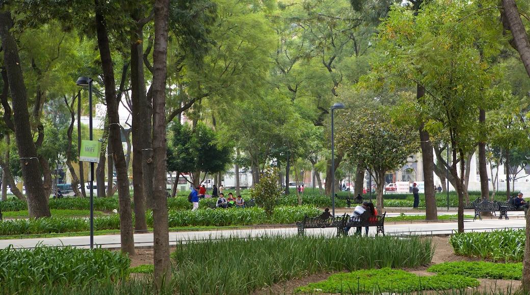 Alameda Central que incluye un parque