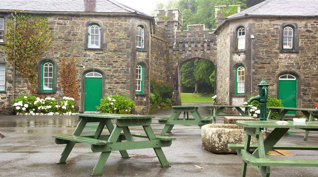 Irish Agricultural Museum which includes a square or plaza and a small town or village