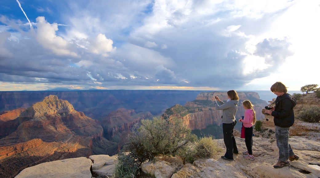 North Rim featuring desert views, tranquil scenes and a gorge or canyon