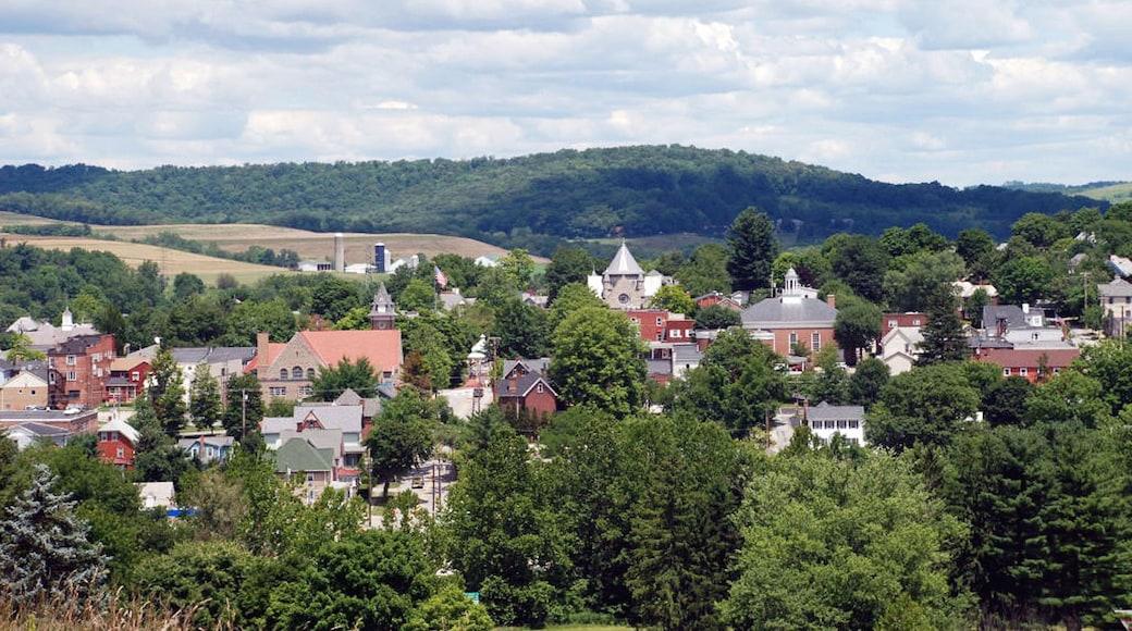 Ligonier mostrando uma cidade pequena ou vila e paisagem