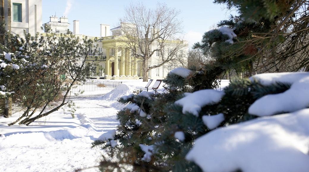 Hamilton which includes snow