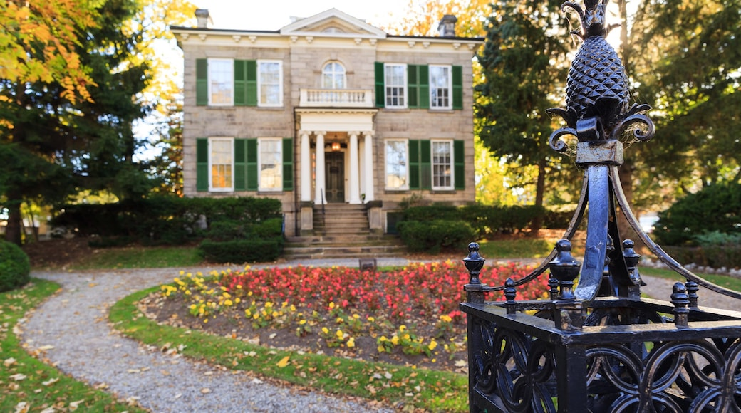 Hamilton showing a house and a park