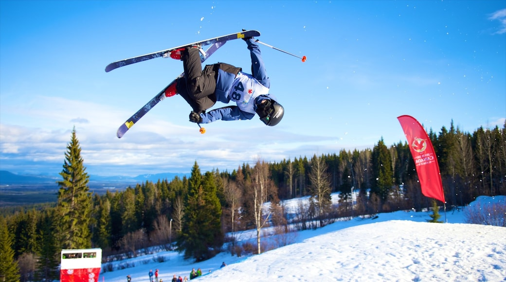 Prince George showing snow skiing, snow and a sporting event