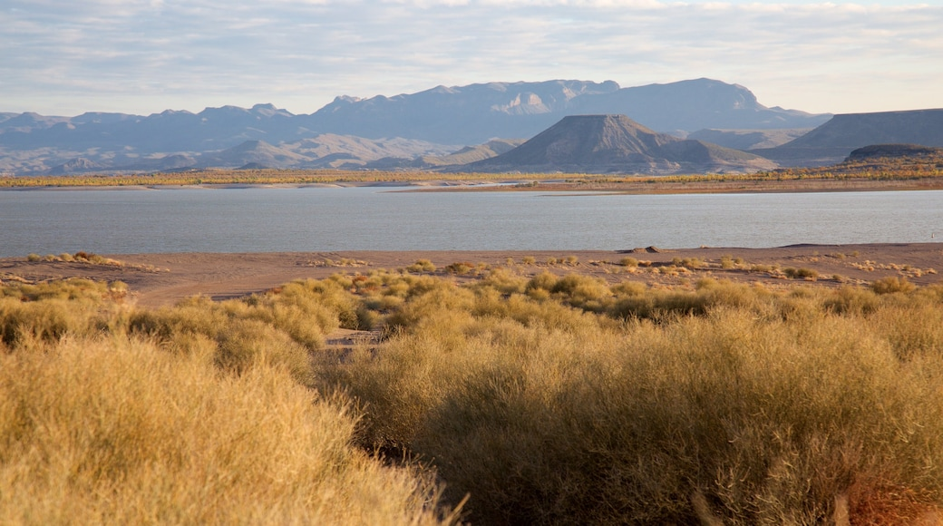 Elephant Butte featuring a lake or waterhole and tranquil scenes