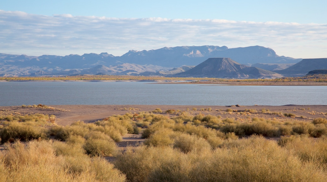 Elephant Butte showing a lake or waterhole and tranquil scenes