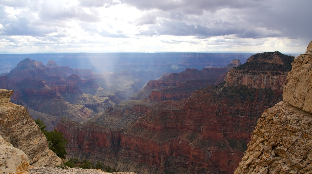 Bright Angel Trailhead which includes tranquil scenes and a gorge or canyon