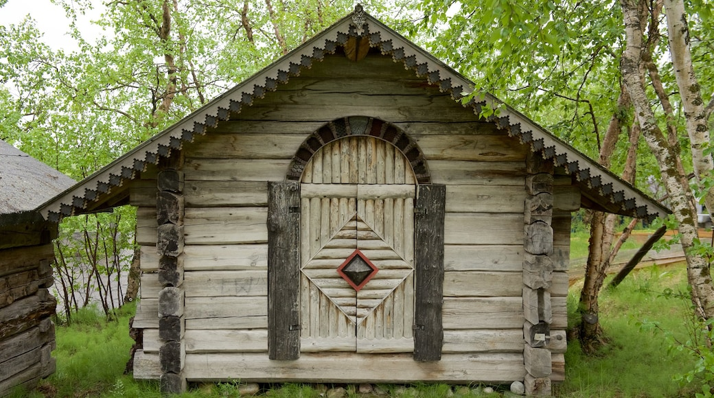 Juhlin hopeagalleria featuring talo