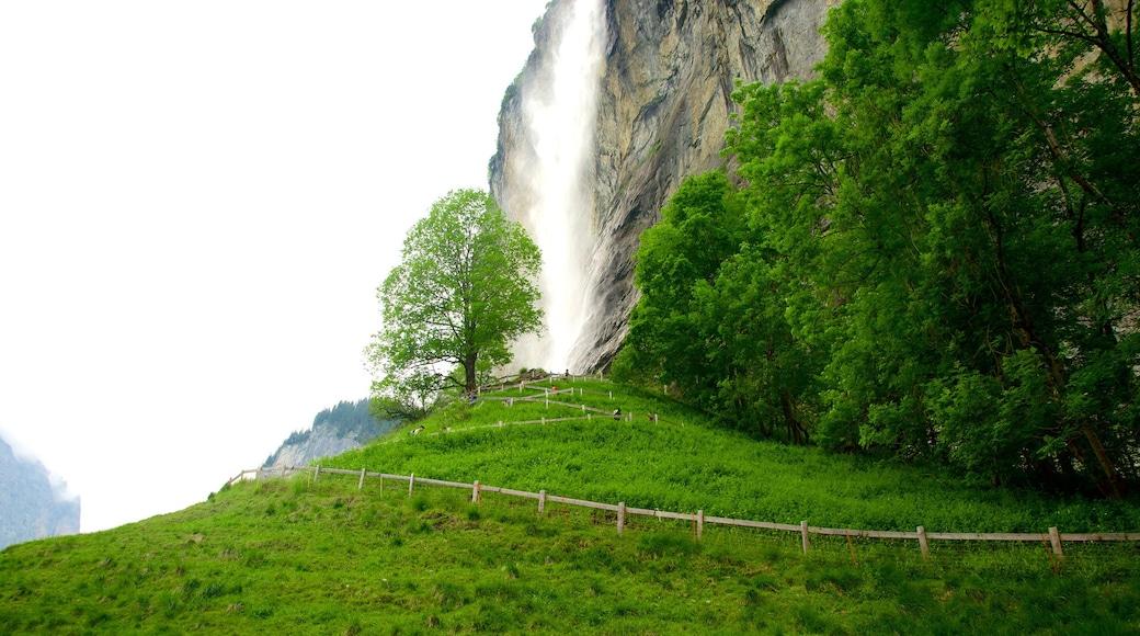 Lauterbrunnen which includes farmland and a cascade