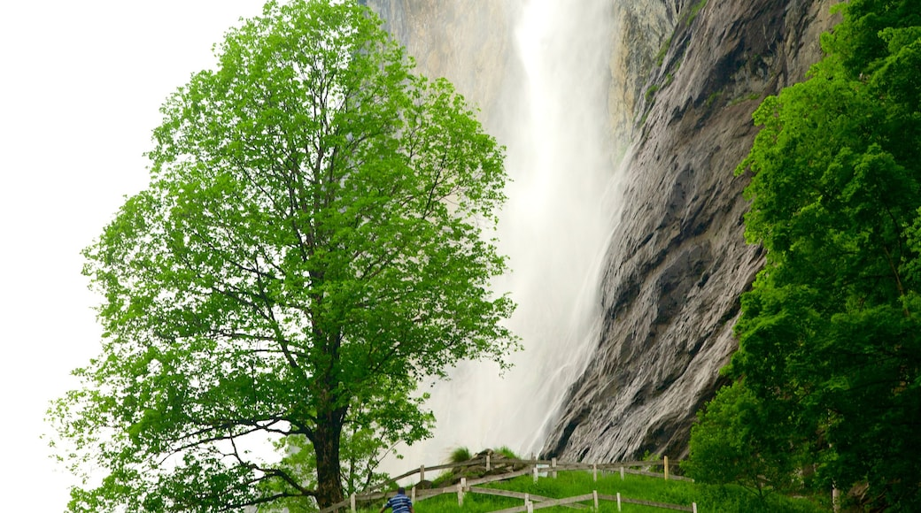 Lauterbrunnen featuring farmland and a cascade