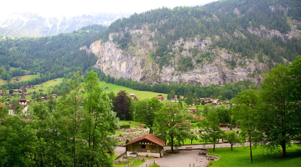 Lauterbrunnen showing farmland and landscape views
