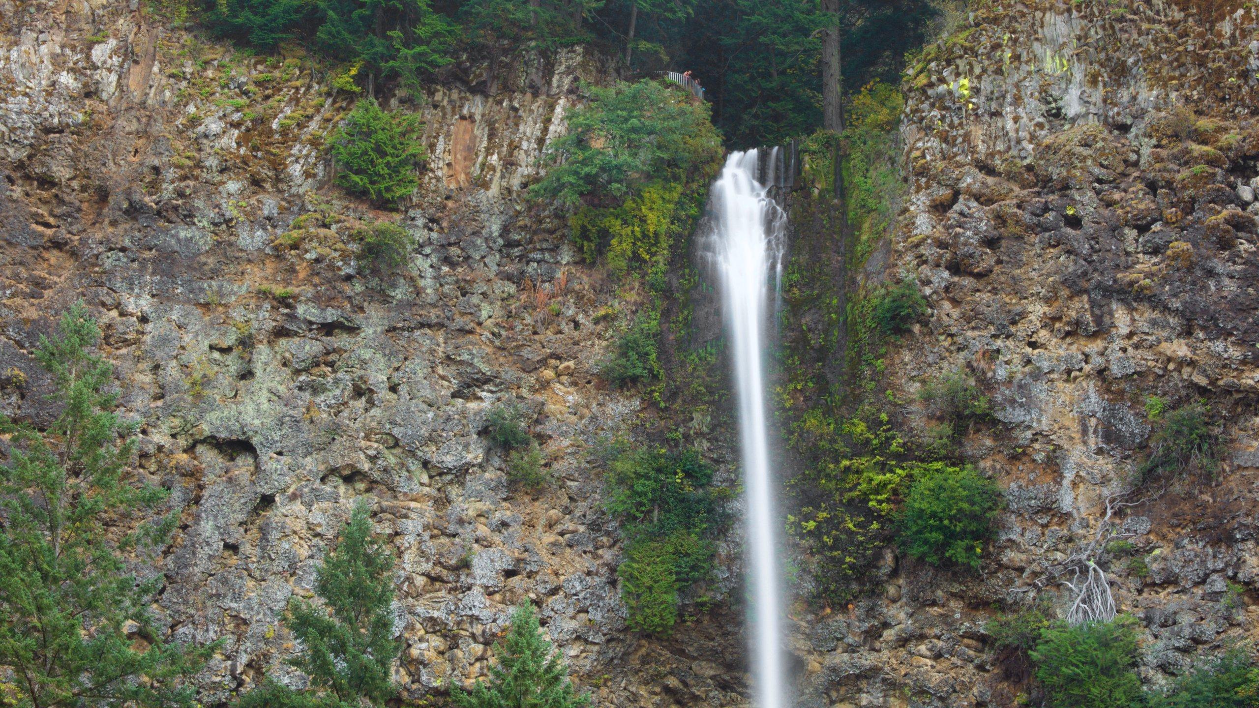 Corbett, Oregon, United States of America