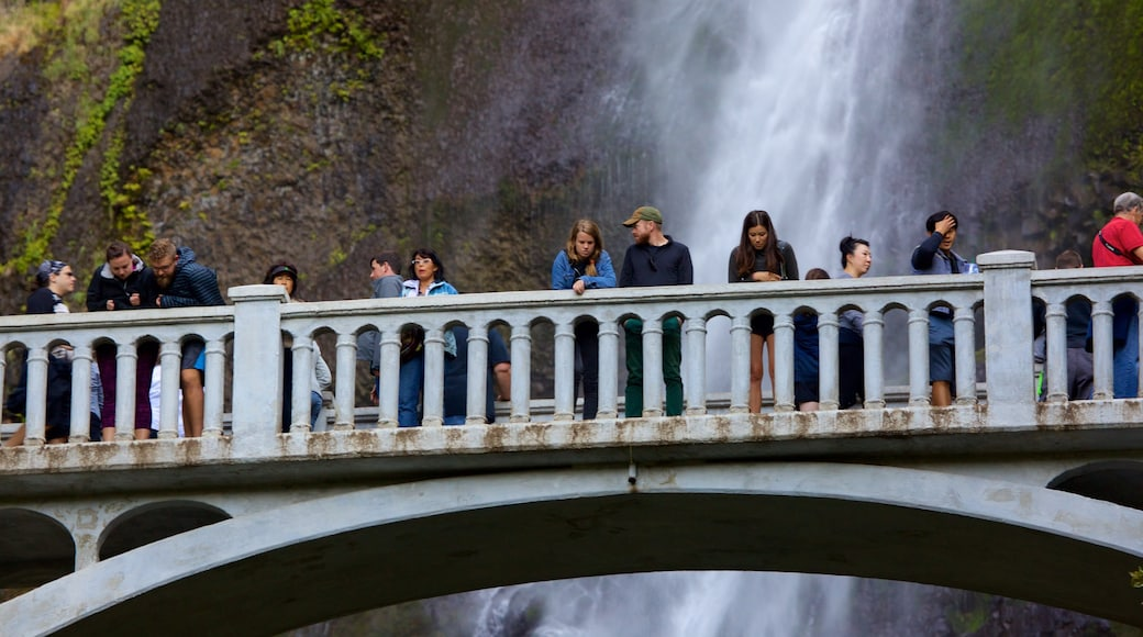 Multnomah Falls showing a bridge as well as a large group of people