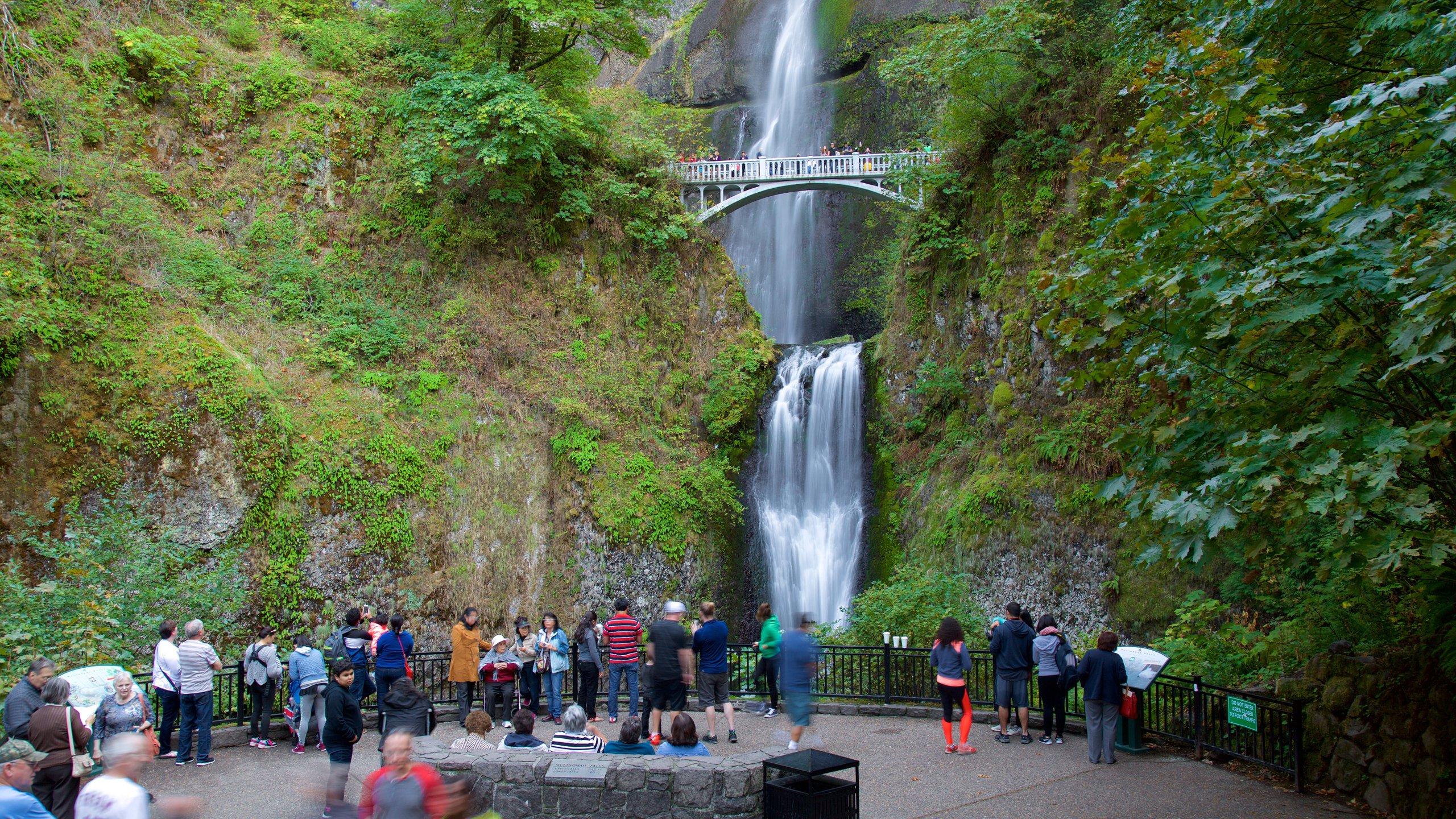 Multnomah Falls, Corbett, Oregon, United States of America