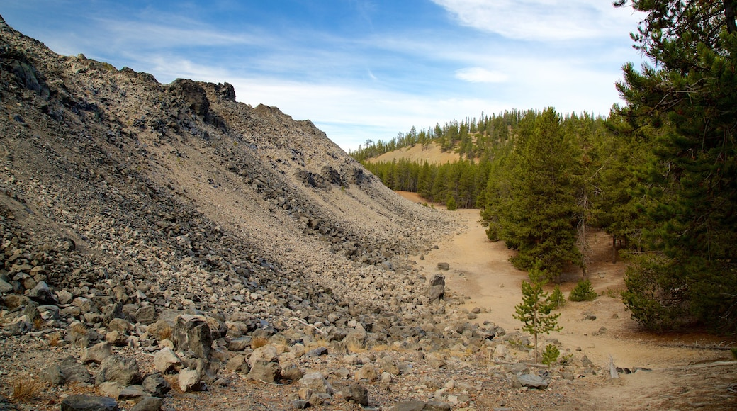 Newberry National Volcanic Monument which includes tranquil scenes and forest scenes