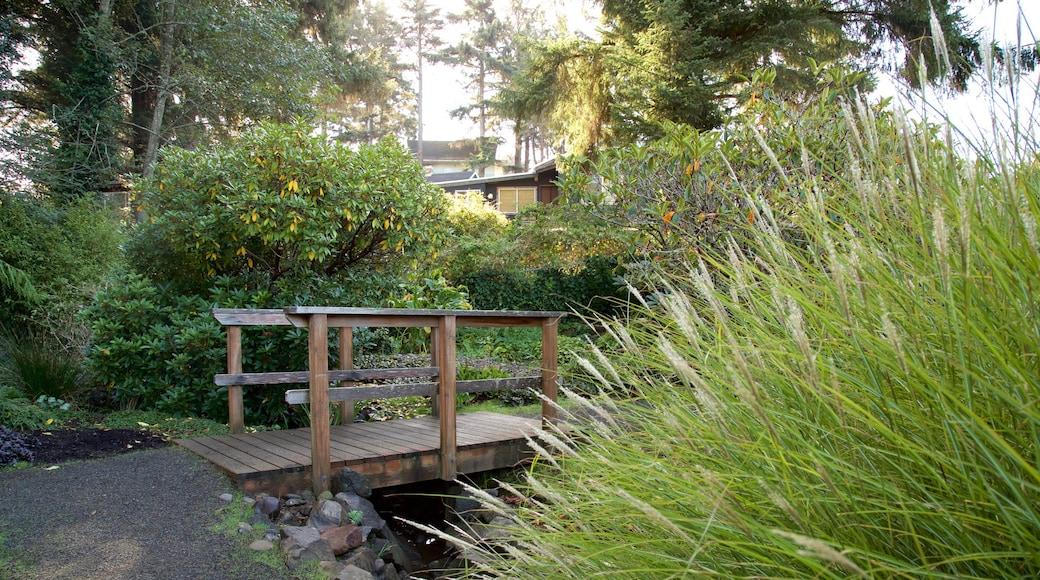Connie Hansen Garden featuring a bridge and a park