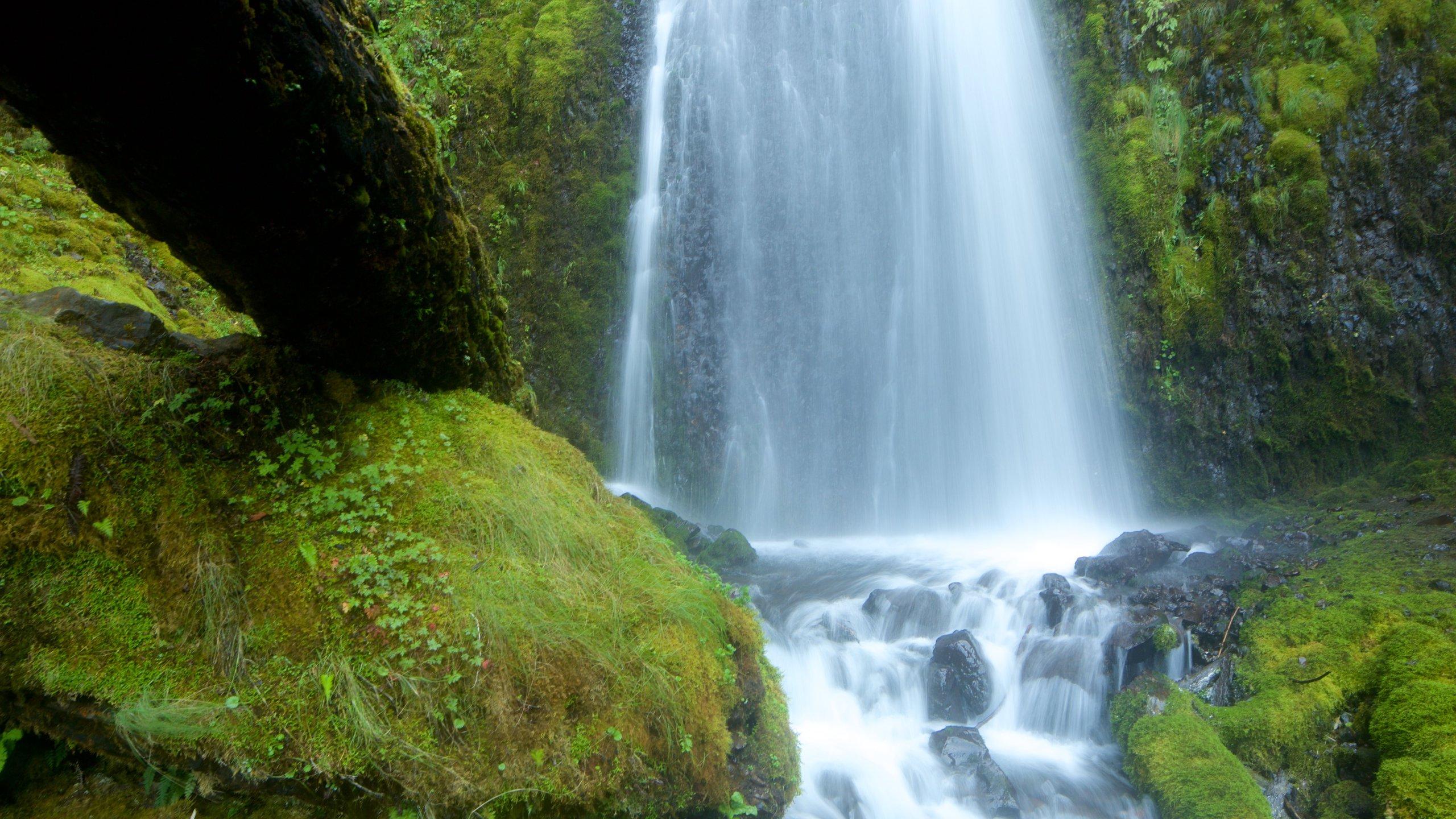 Wahkeena Falls, Corbett, Oregon, USA
