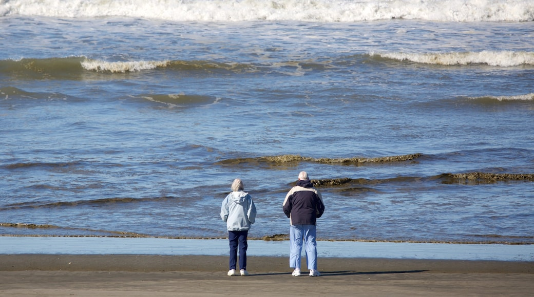 Ocean Shores Beach showing general coastal views and a sandy beach as well as a small group of people